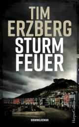 Cover-Bild Sturmfeuer