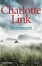 Cover-Bild Sturmzeit