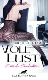 Cover-Bild VollLust | 22 Erotische Geschichten
