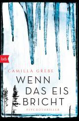 Cover-Bild Wenn das Eis bricht