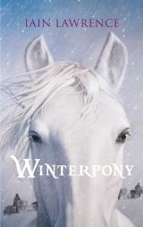 Cover-Bild Winterpony